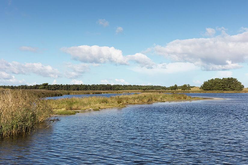 Der Nationalpark Vorpommersche Boddenlandschaft