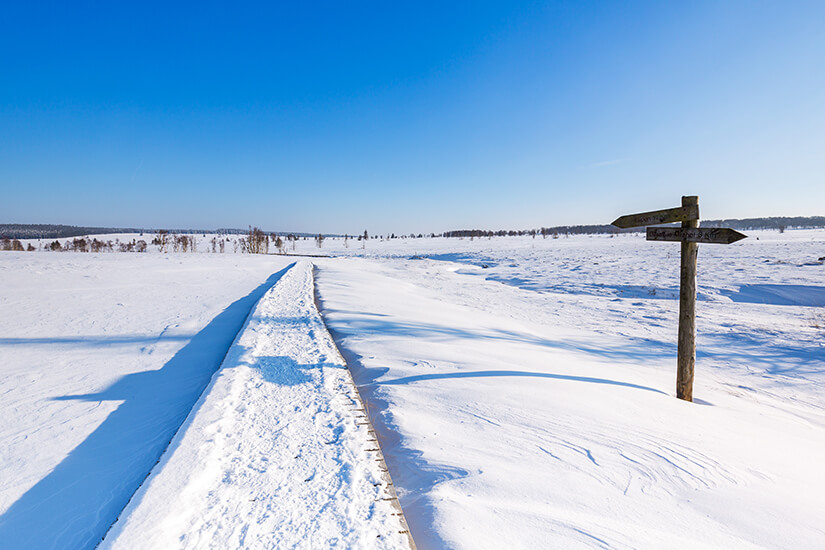 Winterwanderung durchs Hohe Venn