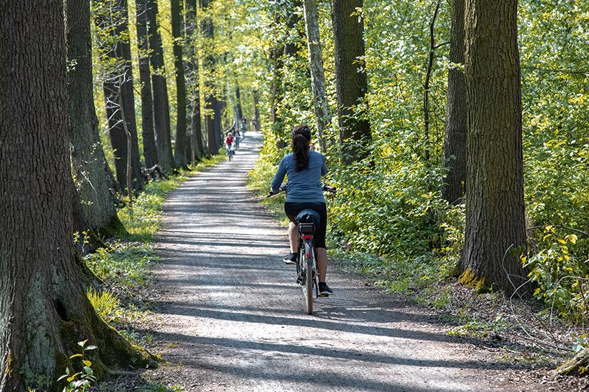 Der Gurkenradweg im Spreewald