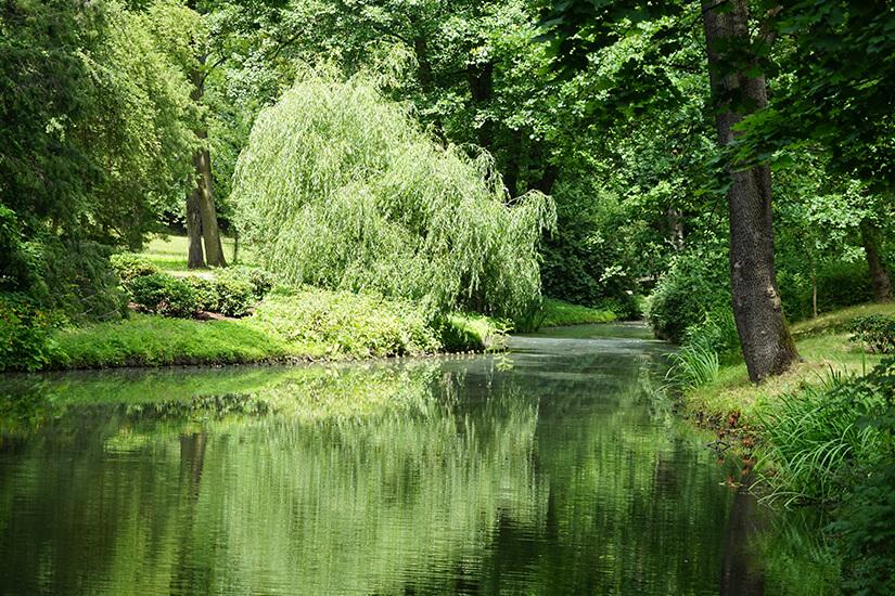 Natur und Wasserwege im Lazienki-Park