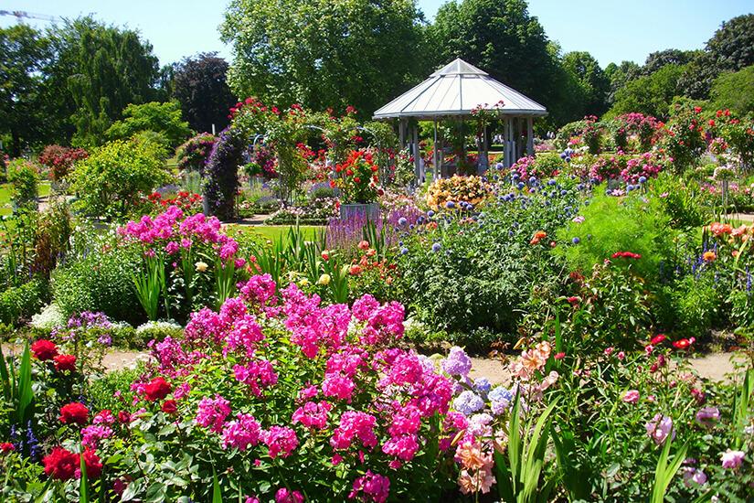Blumenparadies in Planten un Blomen