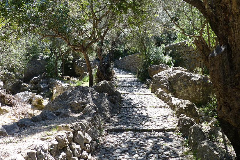 Unterwegs auf dem Fernwanderweg GR221 auf Mallorca