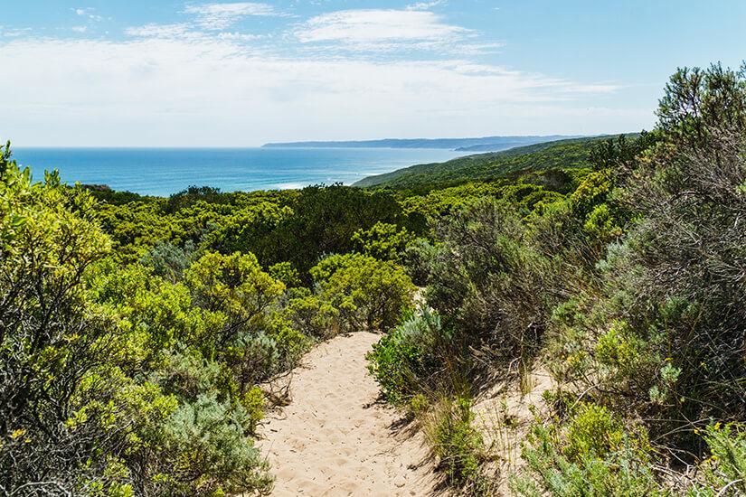 Great Ocean Walk in Australien mit Blick auf die Kueste