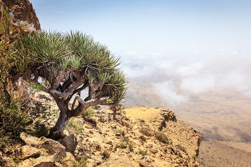 Ausblick vom Jebel