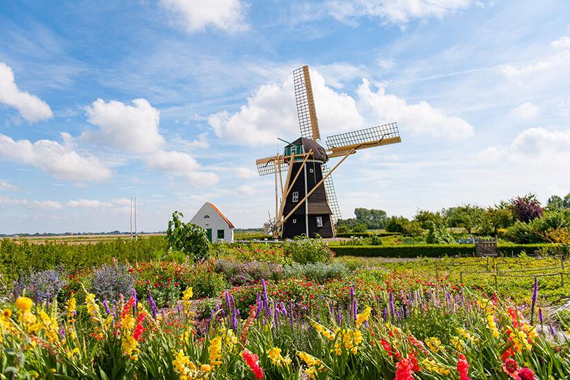Windmuehle in Zeeland