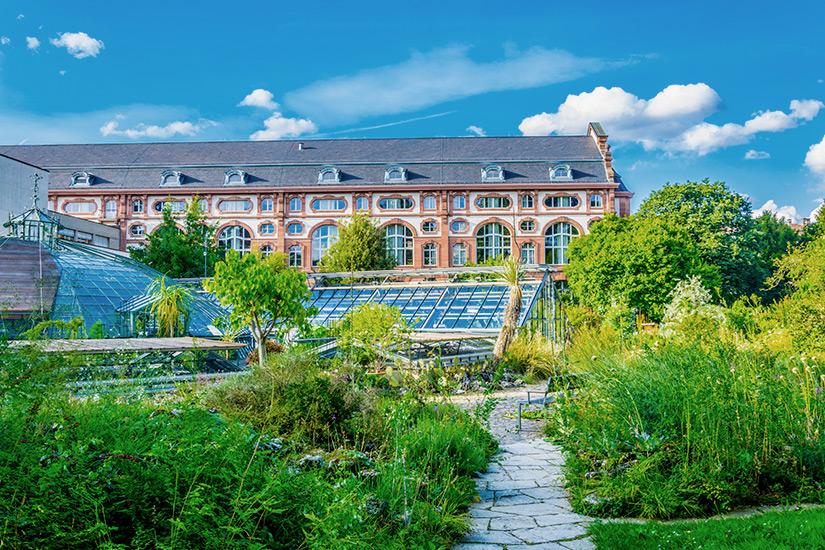 Botanischer Garten Basel