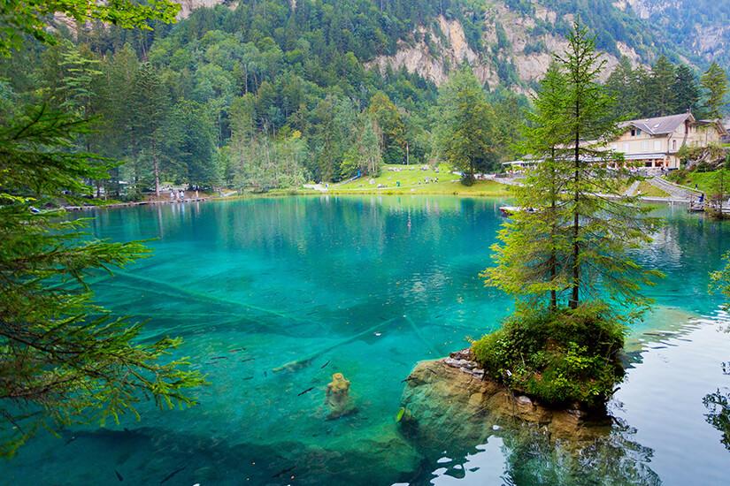 Natur pur am Schweizer Blausee