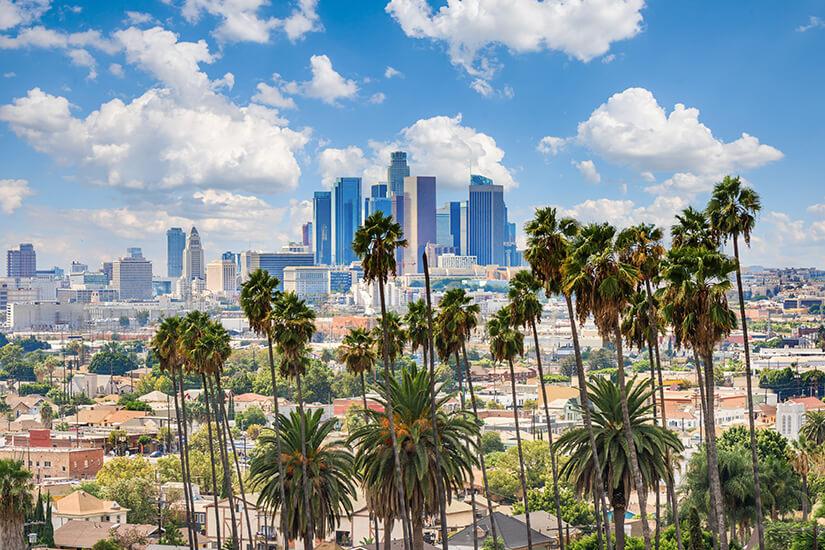 Blick auf Los Angeles mit Palmen