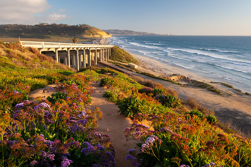 Stimmungsvoller Torrey Pines State Beach bei San Diego