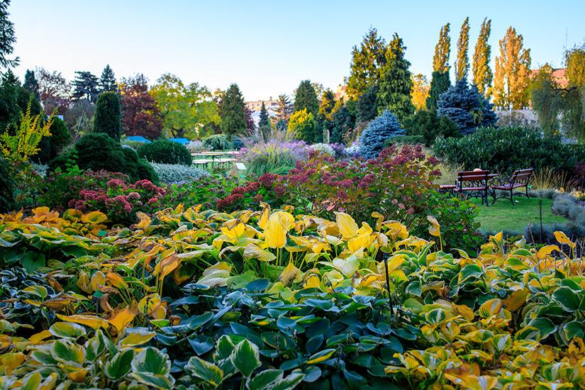 Breslaus Botanischer Garten