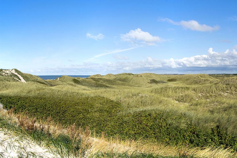 Blick auf die Nordsee in Daenemark