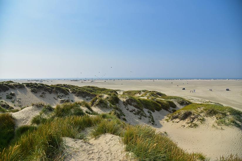 Strand Nordseeinsel Romo