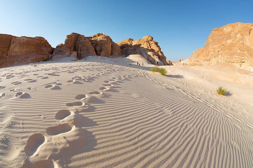 Wuestenwelt auf der Sinai-Halbinsel
