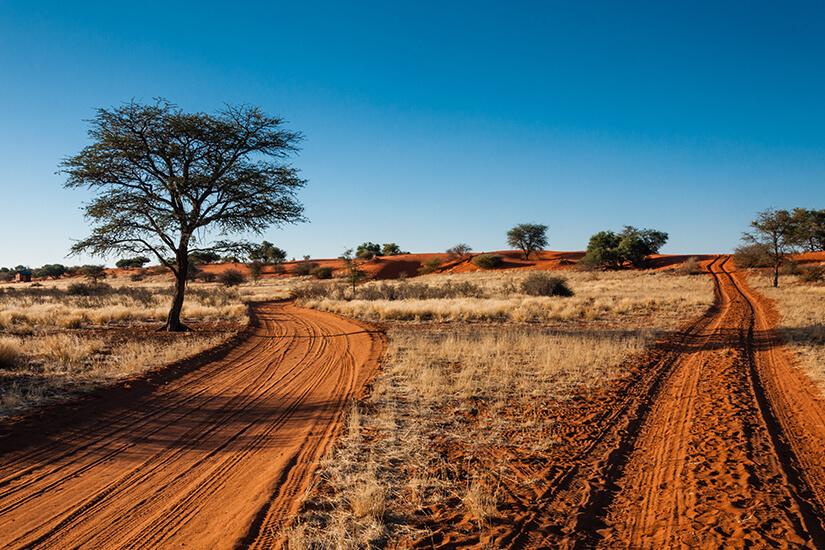 Sandpiste in der Kalahari