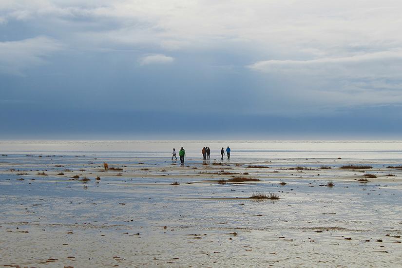 Spaziergang im Wattenmeer bei Fanoe