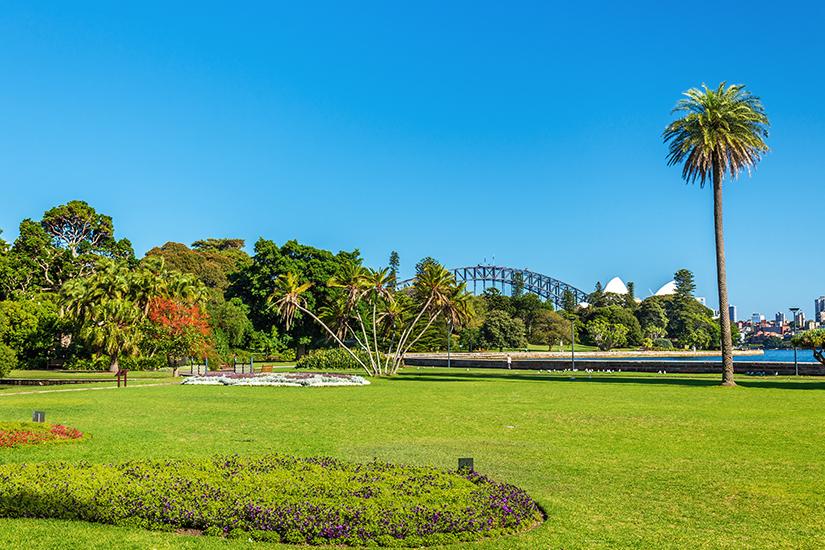Royal Botanic Garden in Sydney