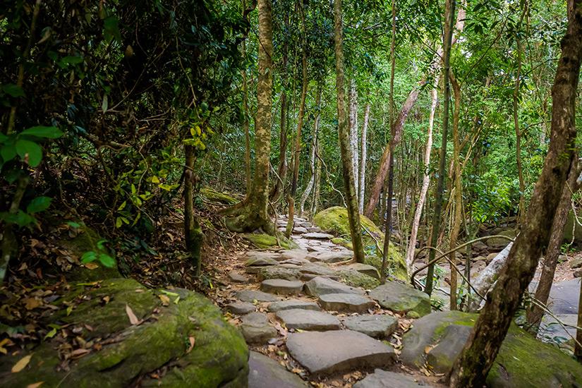 Unterwegs im Dschungel von Phu Quoc