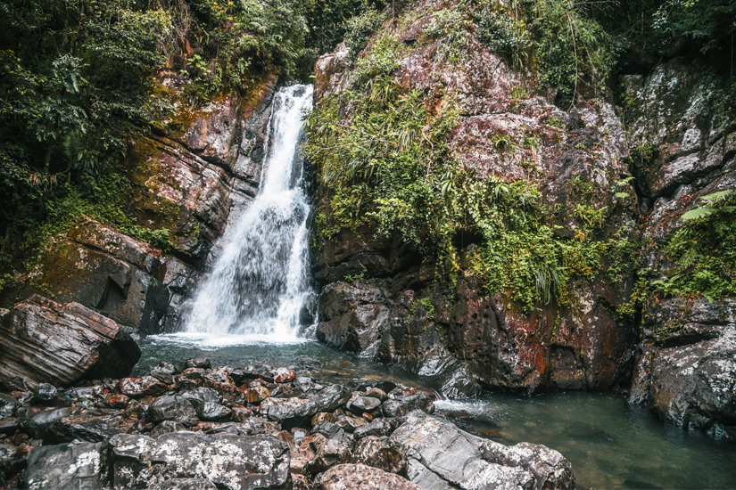 _El Yunque National Forest