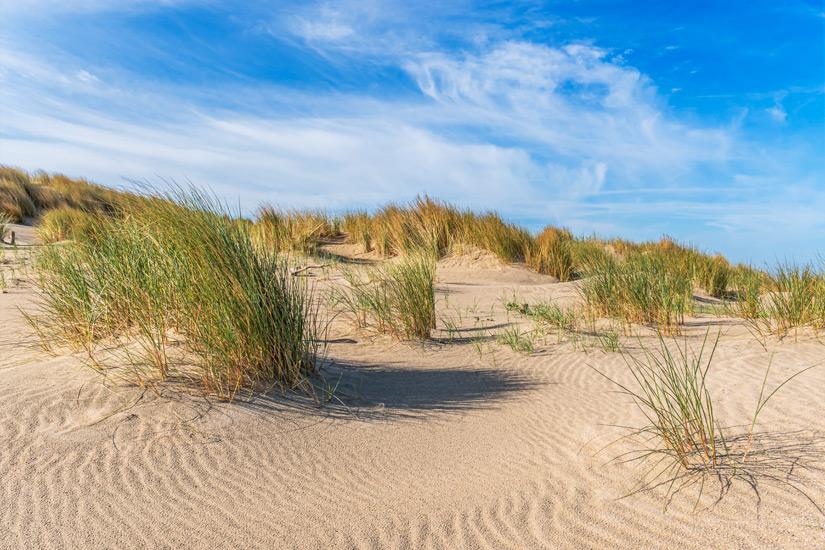 Duenen-Kijkduin-Strand