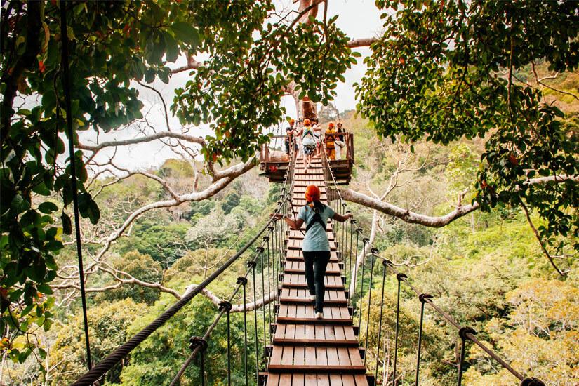 Dschungel von Phuket