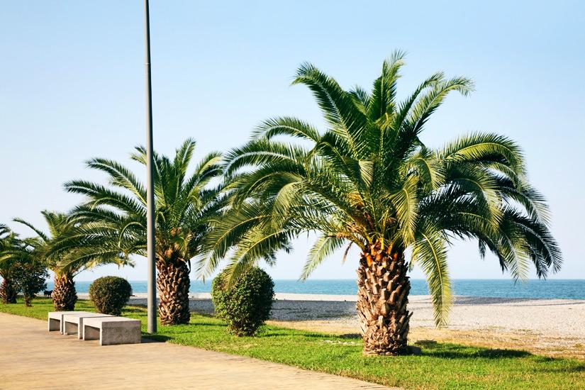 Promenade und Strand in Batumi