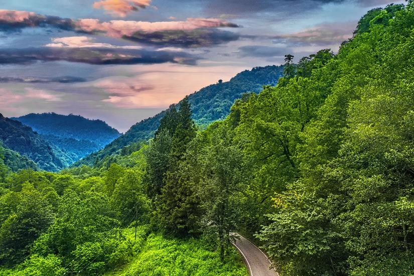 Mtirala National Park in Georgien