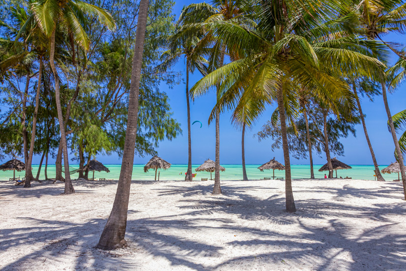 Palmen auf dem Paje Beach