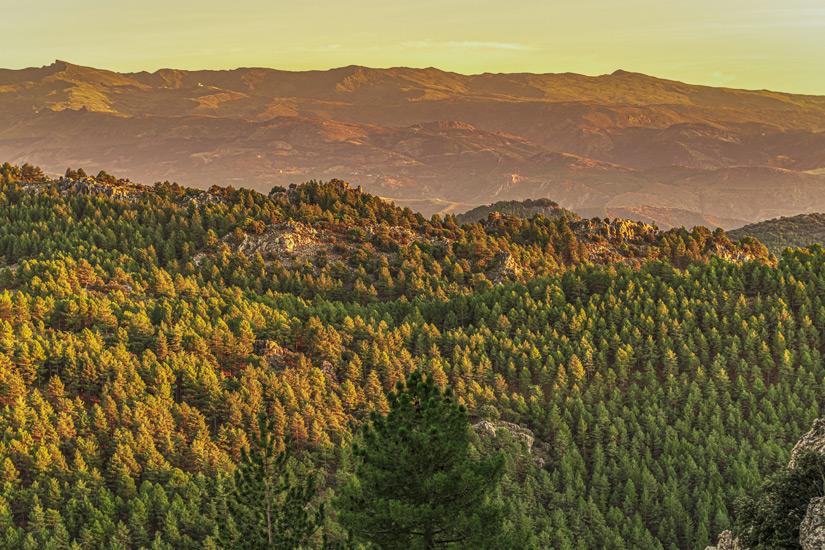 Der Pico de Veleta im Nationalpark Las Alpujarras