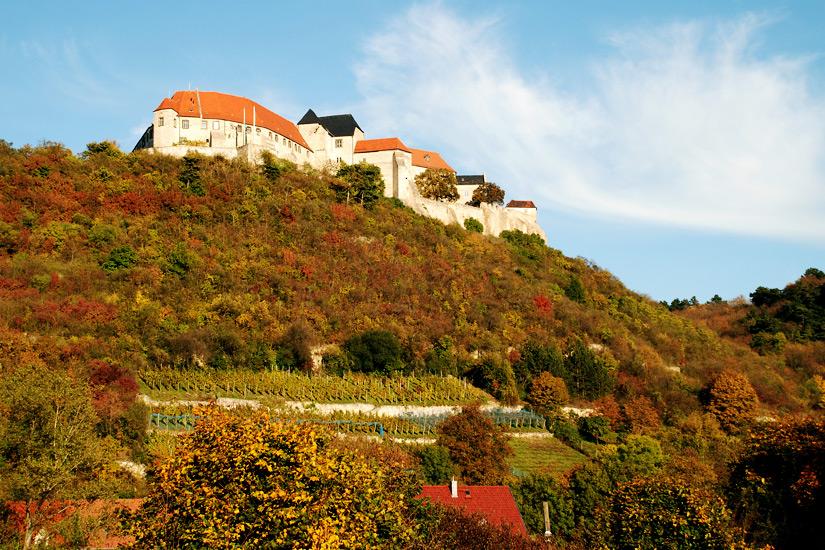 Schlossberg-Freiburg
