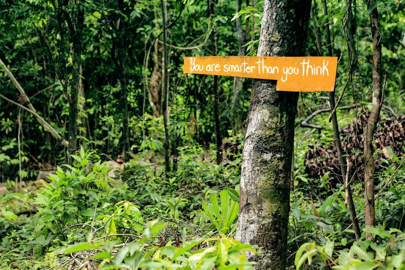 Wandern durch den Dschungel von Koh Rong