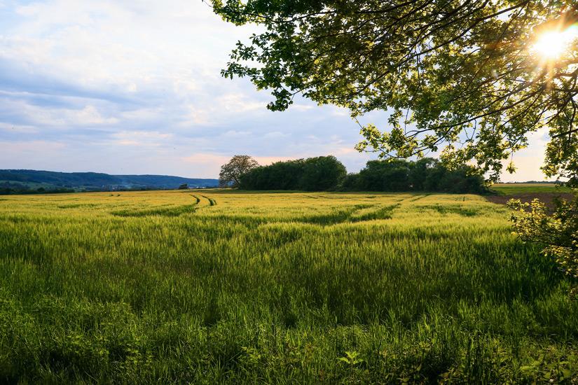 Landschaft im Biosphaerenreservat Bliesgau