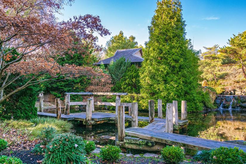 Die Royal Tasmanian Botanical Gardens