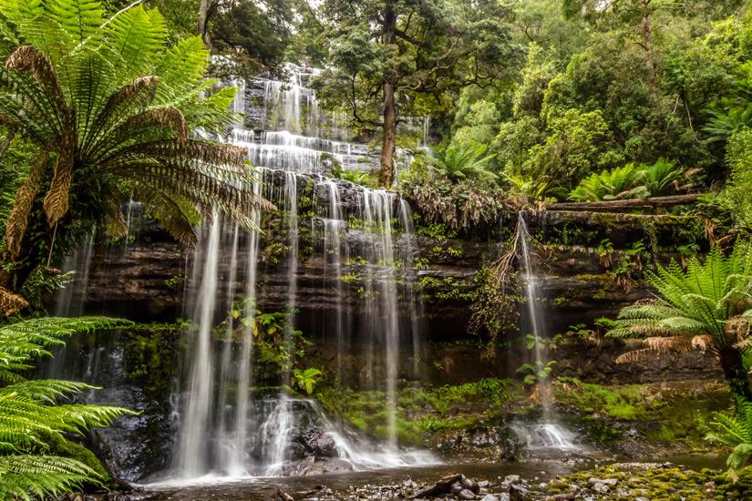 Die Russel Falls im Mount Field National Park