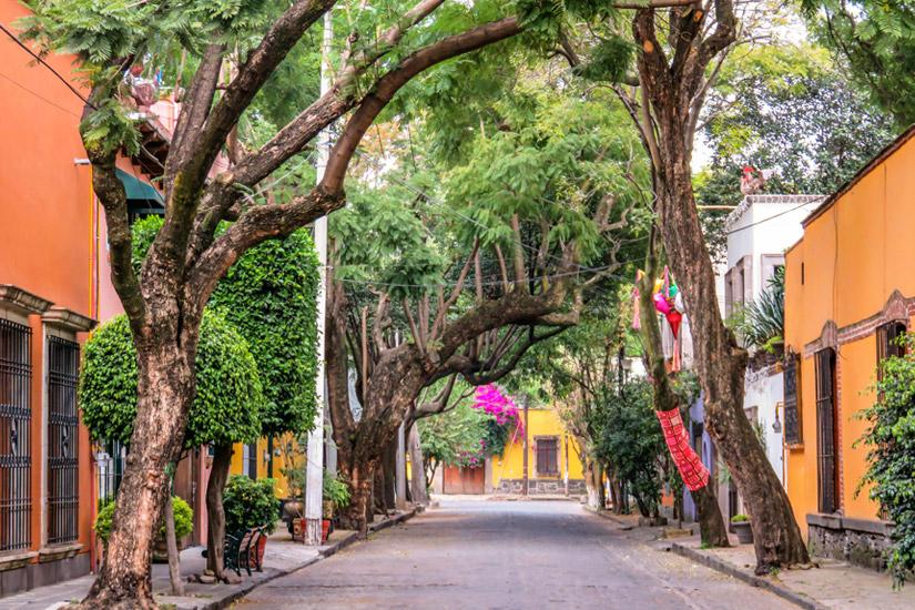 Coyoacan-Mexico-City