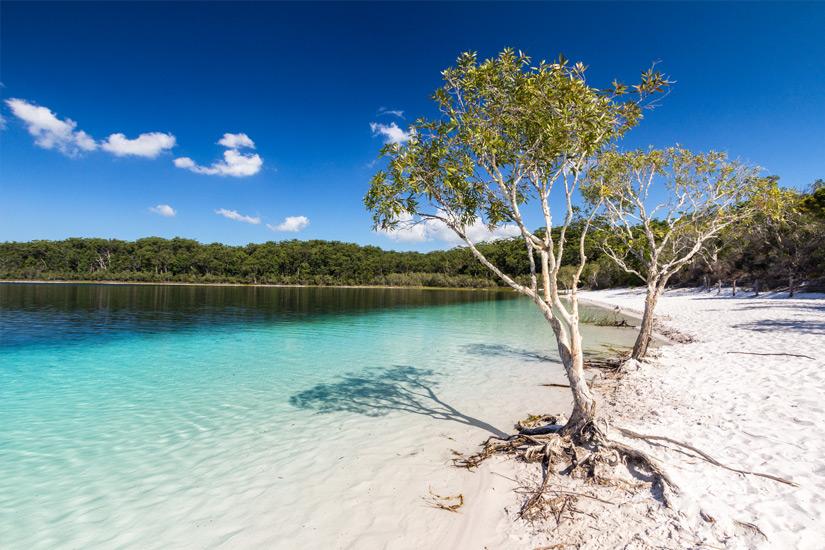 Lake-McKenzie-auf-Fraser-Island