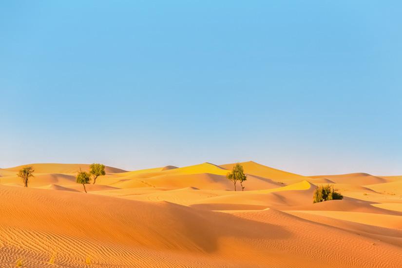 Duenen-der-Rub-al-Khali