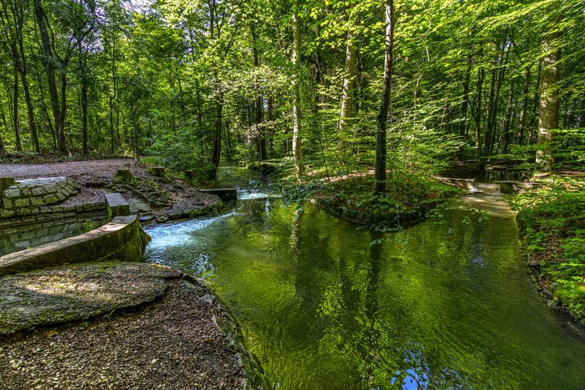 Spazieren-im-Siebentischwald