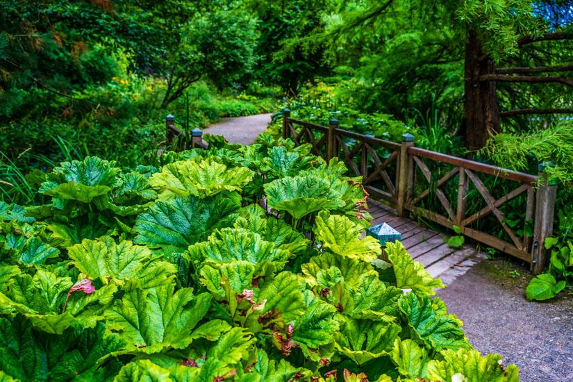 Im-Botanischen-Garten-Augsburg